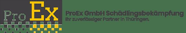 ProEx Logo